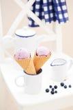 Blueberry ice cream stock photography