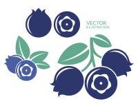 Blueberry. Icon set Stock Photography
