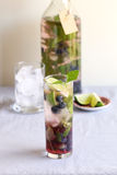 Blueberry infused water with fresh mint Royalty Free Stock Image