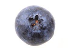 Blueberry isolated Stock Photos