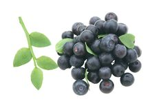 Blueberry isolated over white Royalty Free Stock Photo