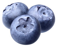 Blueberry isolated Stock Photo