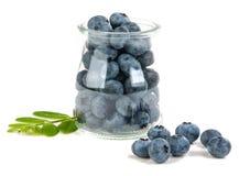 Blueberry isolated. On white background Royalty Free Stock Image