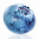 Blueberry isolated on white. Single blueberry isolated on white background stock photo