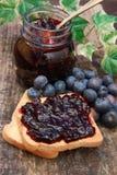 Blueberry jam royalty free stock photo