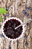 Blueberry jam Stock Photography