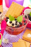 Blueberry jelly with semolina and biscuit for baby Royalty Free Stock Photography