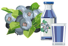 Blueberry juice. Illustration of blueberry juice in bottle with glass and blueberries Stock Photography