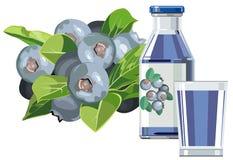 Blueberry juice vector illustration