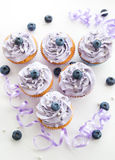 Blueberry and lavender cupcakes Stock Photography