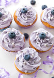 Blueberry and lavender cupcakes Royalty Free Stock Photos