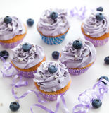 Blueberry and lavender cupcakes Stock Photos