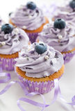 Blueberry and lavender cupcakes Stock Photo