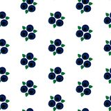 Blueberry with leaf seamless pattern vector.  Royalty Free Stock Photography