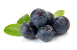 Blueberry with leaves Stock Photos