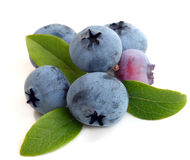 Blueberry with leaves Royalty Free Stock Image