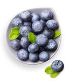 Blueberry with leaves isolated Stock Photos