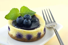 Blueberry lemon cheesecake Stock Photography