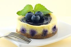 Blueberry lemon cheesecake Stock Images