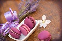 Blueberry macaroon - macaron Royalty Free Stock Photography