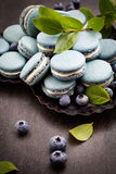 Blueberry macaroons Stock Photo