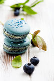 Blueberry macaroons Stock Photography