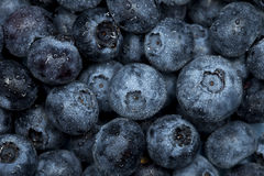 Blueberry macro background, selective focus Stock Photos