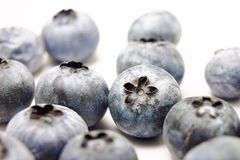Blueberry (many blueberry white background) Stock Image