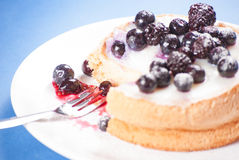 Blueberry mini cake Stock Photos