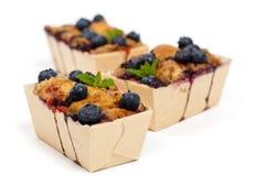Blueberry Mini Cakes Stock Photos