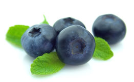 Blueberry with mint Royalty Free Stock Photography