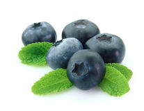 Blueberry with mint Stock Photography
