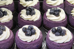 Blueberry Mousse Cake with Fruits Stock Photos