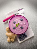 Blueberry mousse with yogurt Stock Photos