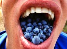 Blueberry mouth Stock Photos