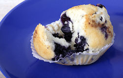 Blueberry muffin. Moist and delicious fresh baked muffin stock images