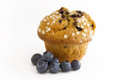 Blueberry Muffin. With berries in front stock photography