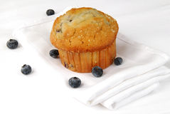 Blueberry muffin Royalty Free Stock Image