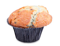 Blueberry muffin. Homemade blueberry muffin  on white background Royalty Free Stock Photo