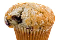 Blueberry Muffin Stock Photography