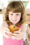 Blueberry Muffin Stock Photos