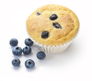 Blueberry Muffin Blueberries. A blueberry muffin with some fresh blueberries isolated on a white stock images