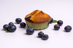 Blueberry muffin with blueberries on white background Stock Photos