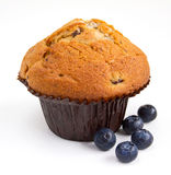 Blueberry muffin with fresh fruit on white Royalty Free Stock Image