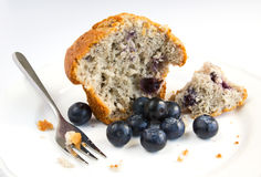 Blueberry muffin with fresh fruit on white plate Stock Photos