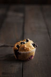 Blueberry Muffin Royalty Free Stock Images