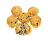 Blueberry Muffin Group Stock Photo
