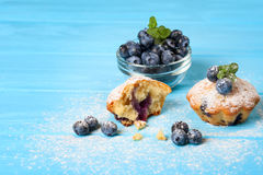 Blueberry muffin. Homemade baked cupcake with blueberries, fresh berries, mint, powdered sugar on blue wooden background. Top view Royalty Free Stock Images