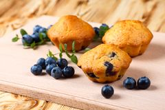 Blueberry muffin. Homemade baked cupcake with blueberries, fresh berries, mint on wooden background. Empty space for text. Royalty Free Stock Photography