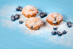 Blueberry muffin. Homemade baked cupcake with blueberries, fresh berries, powdered sugar on blue wooden background. Top view. Stock Image